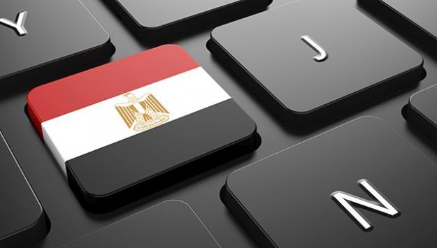 Social Media and Economic Development in Egypt